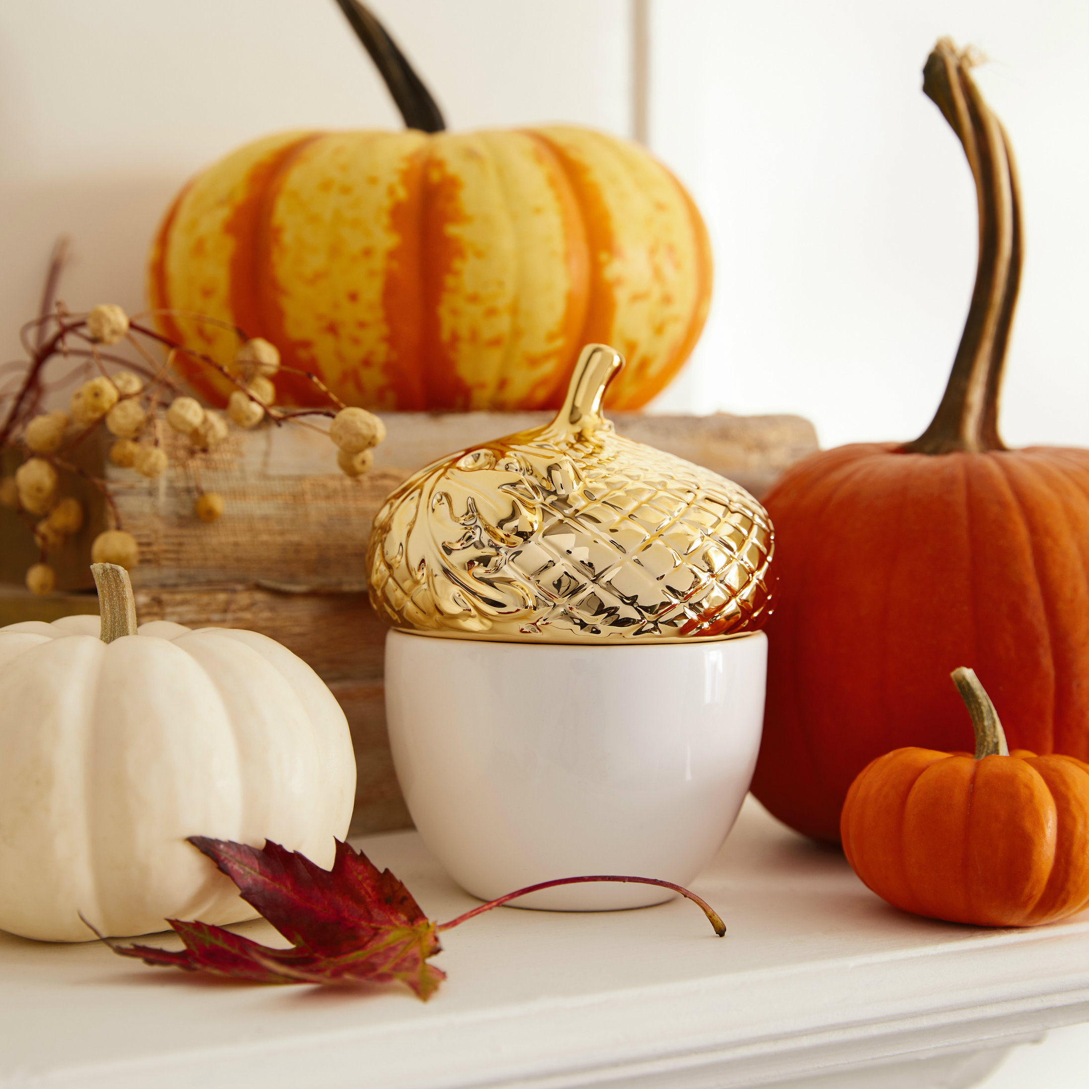 Spiced Harvest Acorn Candle