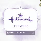 Video of Hallmark Flowers
